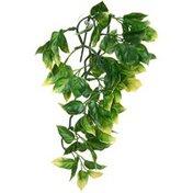 Exo Terra Amapallo Small Jungle Plant