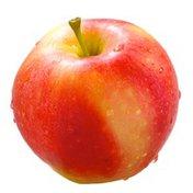 Autumn Glory (Huaguan) Apple