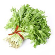 Lettuce Escarole