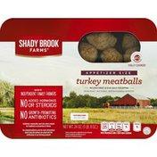 Shady Brook Farms Meatballss, Turkey, Appetizer Size