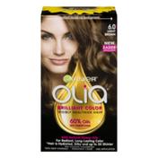 Garnier Olia Brilliant Color Visibly Healthier Hair 6.0 Light Brown