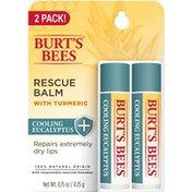 Burt's Bees Cooling Rescue Lip Balm