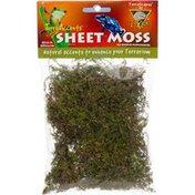 Terrascapes T-Rex Terra Accents Sheet Moss