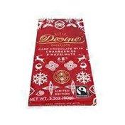 Divine Dark Chocolate With Cranberries & Hazelnuts