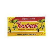 XyliChew Fruit Chewing Gum With Xylitol