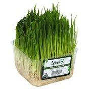 Nature Jim's Wheat Grass