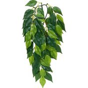 Exo Terra Silk Ficus Jungle Plant