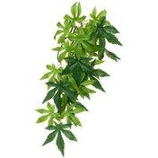 Exo Terra Silk Abutilon Jungle Plant