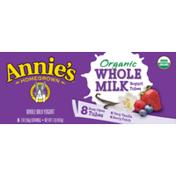 Annie's Homegrown Organic Berry Patch/Very Vanilla Whole Milk Yogurt Tubes