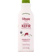 Lifeway Kefir, Organic, Strawberry
