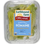 Earthbound Farms Organic Sweet & Crisp Romaine