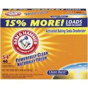 Arm & Hammer Clean Burst 54 Loads Powder Laundry Detergent