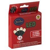 Brilliant Lights, LED, White Bulb