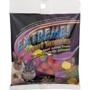 Extreme! Yogurt Yummies Small Animal Treats
