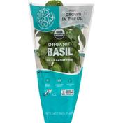 That's Tasty Basil, Organic