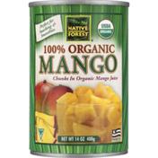Native Forest 100% Organic Mango