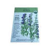 Botanical Interests Organic True Hyssop Seeds