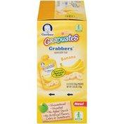 Gerber Fruit Banana Squeezable Puree