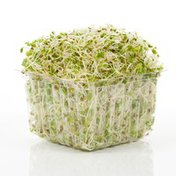 Wild About Sprouts Sprouts, Amazing Alfalfa