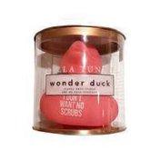 BT Wonder Duck Want No Scrubs