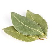 Ole Pacifica Bay Leaf