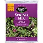 Taylor Farms Spring Mix