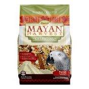 Higgins Mayan Harvest Celestial Blend Mix for Parrots