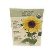 Botanical Interests Sunflower Lemon Queen