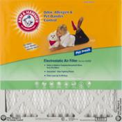 Arm & Hammer Air Filter, Electrostatic, Pet Fresh, Box