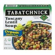Tabatchnick Organic Tuscany Lentil Soup (Frozen)