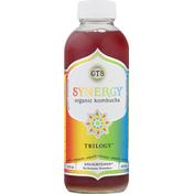 GTs Enlightened Synergy Organic Trilogy Raw Kombucha