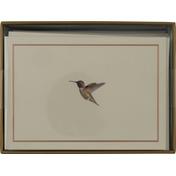 Peter Pauper Note Cards, Hummingbird Flight
