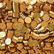 Lieber's Milk Chocolate Coins Bag
