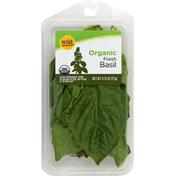 Wild Harvest Basil, Organic, Fresh