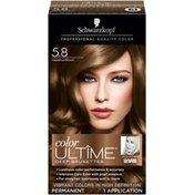 Ultime Deep Brunettes Hazelnut Brown Hair Color