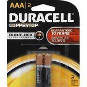 Duracell Alkaline Battery, AAA