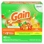 Gain Powder Laundry Detergent For Regular And He Washers, Island Fresh Scent