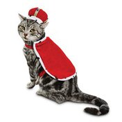King for a Day Cat Halloween Costume