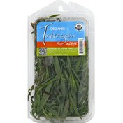 Infinite Herbs Tarragon, Organic