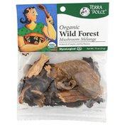 Terra Dolce Organic Wild Forest Mushroom Mélange