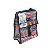 Packit Stripe Blanket Lunch Bag
