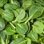 Organic Spinach Package