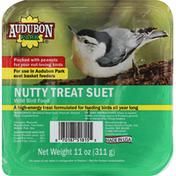 Audubon Park Wild Bird Food, Nutty Treat Suet