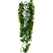 Exo Terra Amapallo Jungle Plant