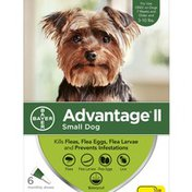 Advantage Once-A-Month Topical Treatment For Fleas And Lice Small Dogs 3 - 10 lbs