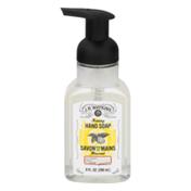 J.R. Watkins Foaming Hand Soap Lemon