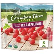 Cascadian Farm Organic Red Raspberries, Premium Frozen Fruit, Non-GMO