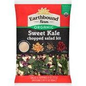 Earthbound Farms Sweet Kale Earthbound Farm Organic Sweet Kale Chopped Salad Kit