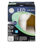 General Electric LED Indoor Floodlight 75W