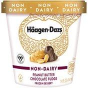 Haagen-Dazs Non Dairy Peanut Butter Chocolate Fudge Frozen Dessert
